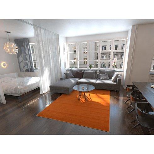 Orange printed rug